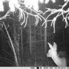 rajakaamera 2.8c pimedas